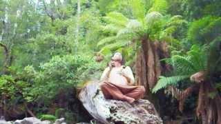 TASMANIAにて森林浴アサラト2013@tasmania,australiabyKota