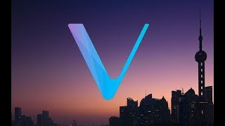 VECHAIN ANNOUNCES ENTERPRISE LEVEL DAPP, MPP & MTT PROTOCOLS EXPLAINED