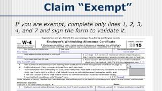 Help Working Kids And Students Correctly Complete A W-4 Form