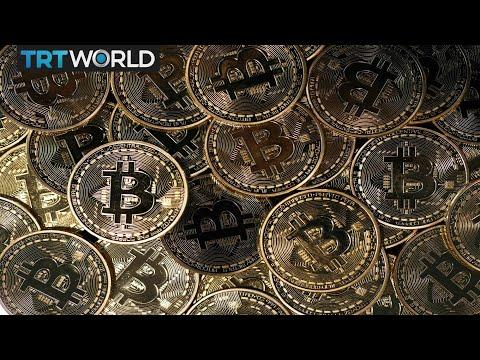 Bitcoin collector pro