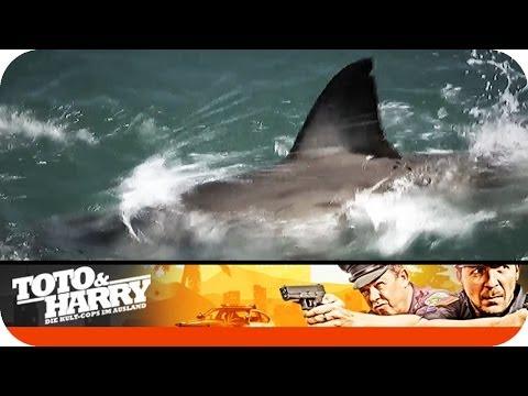 Mit den Haien schwimmen   Toto und Harry - Die Kult-Cops im Ausland