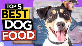✅ TOP 5 Best Dog Food in 2020 (high protein & dry & wet)