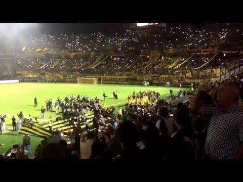 """""""Inauguración  Campeón Del Siglo Club Atlético Peñarol"""" Barra: Barra Amsterdam • Club: Peñarol"""