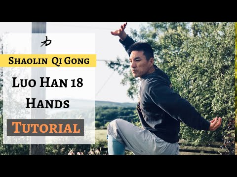 Shaolin Qi Gong - Luo Han 18 Hands | Arhat 18 hands| KungFu.Life - Tutorial