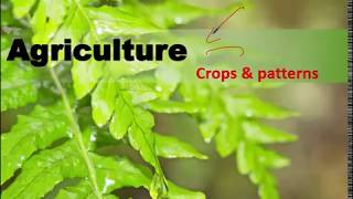 Important Topic : Agriculture Crops and Patterns for Civil Services prelim and Mains