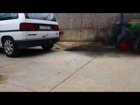 Welches Benzin man den Lada die Drosselbeere überfluten kann