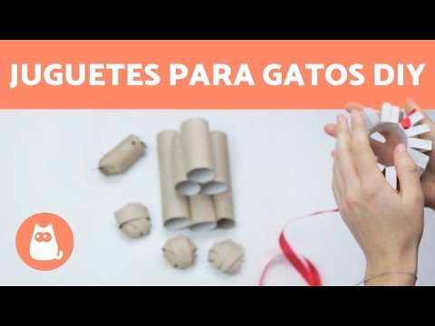 4 juguetes para gatos con rollos de papel higiénico DIY