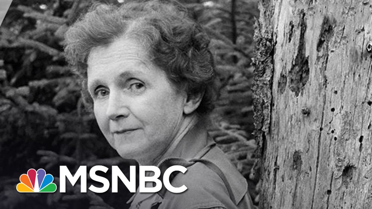 Rachel Carson: Inspiration For The Green Movement | 7 Days Of Genius | MSNBC thumbnail