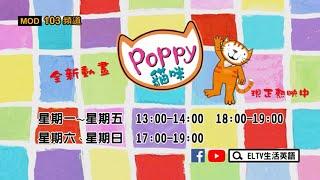 ELTV生活英語台-全新動畫《Poppy 貓咪》上線囉!