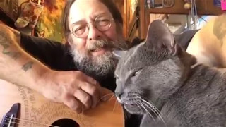 """""""He's my Kitty"""" by Wavy Dave"""
