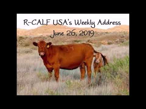 R-CALF USA's Plan to Stop the USDA from Unlawfully Mandating Radio Frequency Identification Devices (RFIDs)