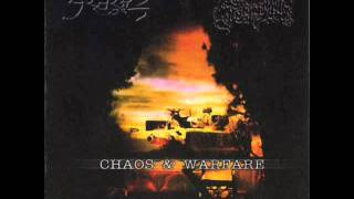 Slechtvalk - Kongsblod - Antestor Cover