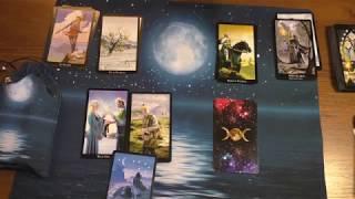 Гороскоп Таро на 2019 год  для Овна