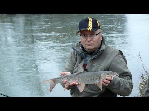 Ryby, rybky, rybičky – 26/2014, premiéra 19. 12. .2014