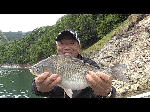 #287 へら鮒釣りの名手が魅せる至高の境地~神流湖 揺らめくウキに注ぐ情熱~