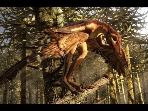 Sinornithosaurus: A poisonous bite - deadly day or night - Planet Dinosaur - BBC
