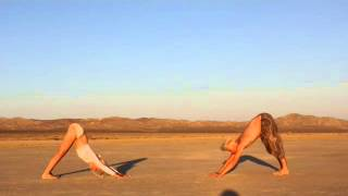 YOGA VINYASA FLOW -Aria and Gus