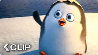 Finding Young Private Movie Clip - Penguins of Madagascar (2014)