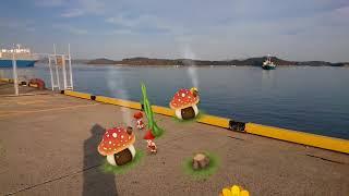 田井新港のバーチャルリアリティー動画撮影