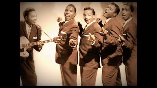 THE DRIFTERS - ''I'LL TAKE YOU HOME''  (1963)