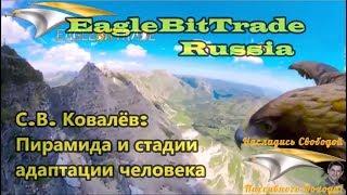 EagleBitTrade. Russia. Пирамида и стадии адаптации человека. С.В.Ковалёв