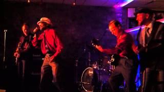 Birdlegg - Why I sing the blues