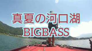 吉田尚晃 撮影 真夏の河口湖バス釣りビッグバス‼️