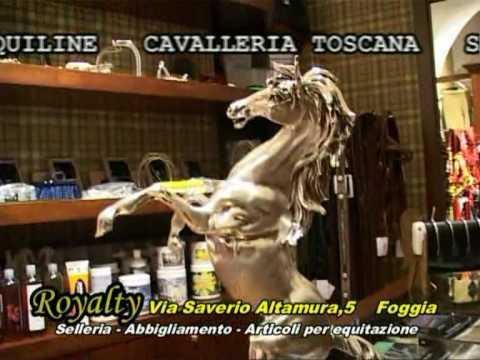 equitazione - Selleria Royalty - Foggia-puglia-abbigliamento per equitazione
