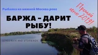Рыбалка на нижней москва реке летом