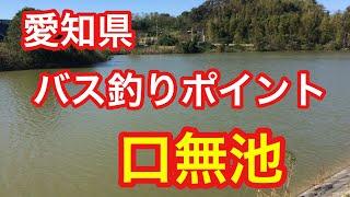 口無池愛知県バス釣りポイントブラックバス