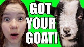 OMG I'VE GOT YOUR GOAT! Official Video | Babyteeth More!
