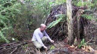 Wie Sie Feuerholz trocken lagern