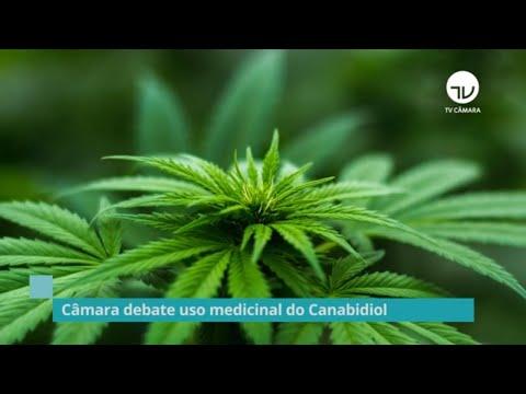 Secretaria de Relações Internacionais debate o uso medicinal do Canabidiol – 16/09/20