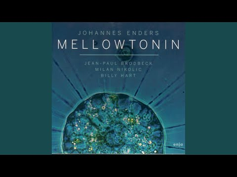 Mellowtonin online metal music video by JOHANNES ENDERS