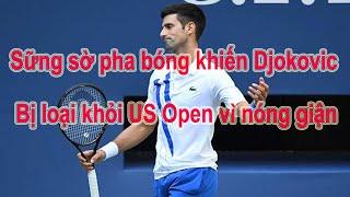 Sững sờ pha bóng khiến Djokovic bị loại khỏi US Open vì nóng giận