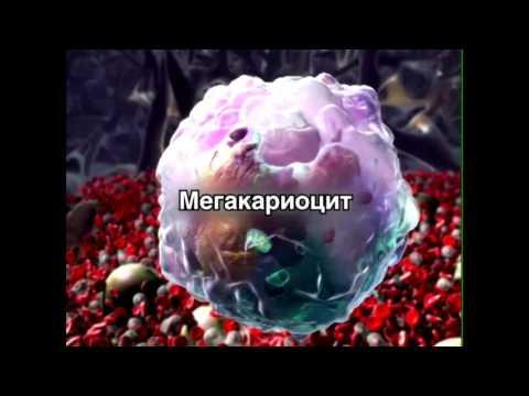 Гепатит с программы в украине