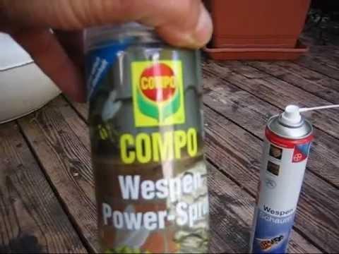 Wespennesterbeseitungung mit Power-Spray und Wespenschaum!