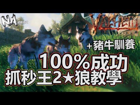 2星狼100%成功詳細教學