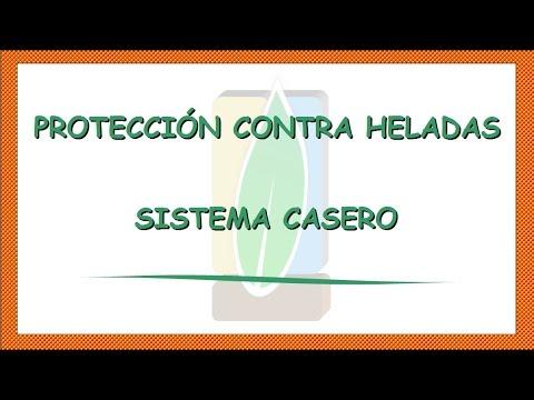 Protección contra heladas en frutales: Sistema casero