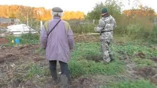 Сергей Пупков приехал забрать Урагана-пса   из деревни в город. 27 09 2017