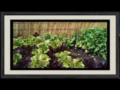Mesa de cultivo Garden Brico Hortalia