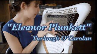 詩音さん竪琴(ライアー)福岡教室オープン!