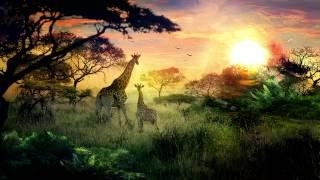 Rameses B - Night Sky - Самые лучшие видео