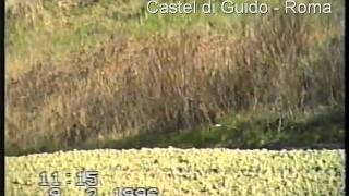 preview picture of video 'ALBANELLA REALE_1.AVI'