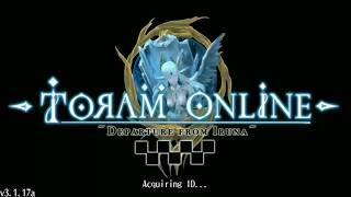Toram Online : Build Stat , Skill & Gear Mage Farm