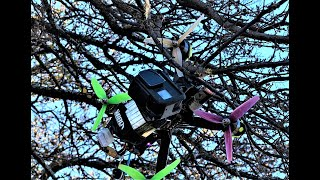 Stuck in a Tree! Happy Thanksgiving FPV Edit! Lookout Point Park & Trails! Stark 5 6S Quad Flying!