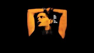 Lou Reed - Coney Island Baby (1976) FULL ALBUM Vinyl Rip