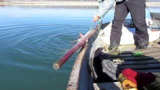 Рыбалка бахчисарайском водохранилище