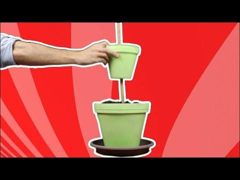 Giardino pensile di erbe aromatiche da interni: bello e utile!