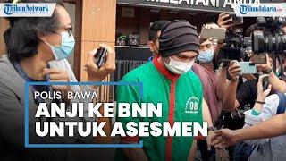 Anji Manji Dibawa ke Kantor BNN untuk Jalani Asesmen, Polisi: Ini Permintaan Keluarga